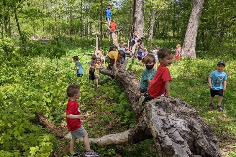 Y-Koda Nature School