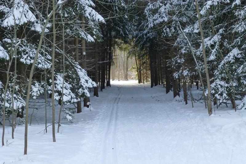 Maywood Ski Trail, photo by Jack Hertel